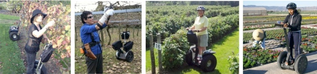 Waikato vineyard; Bay of Plenty Kiwifruit orchard; Canadian berry farm; Spanish plant nursery and garden centre.