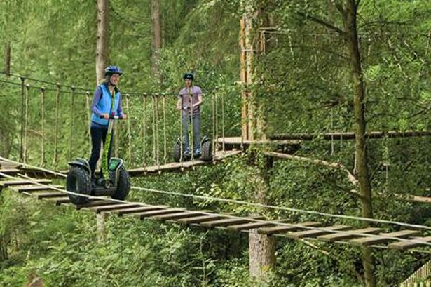 Take a Segway Tour through the treetops at Go Ape, UK. Or not...